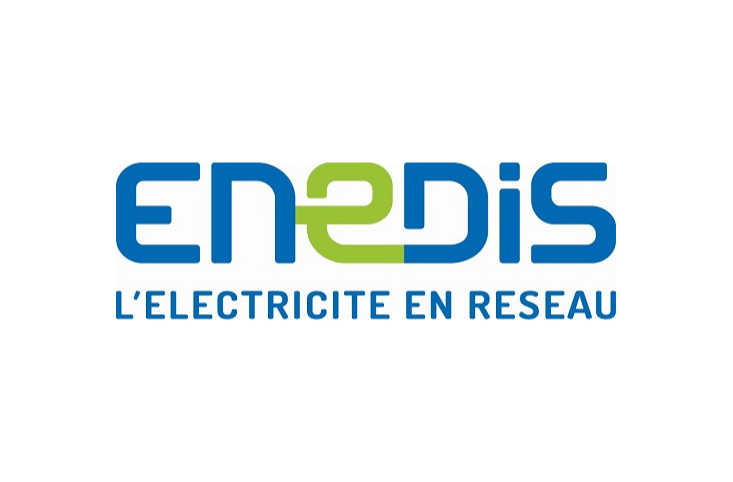 Enedis Success Story