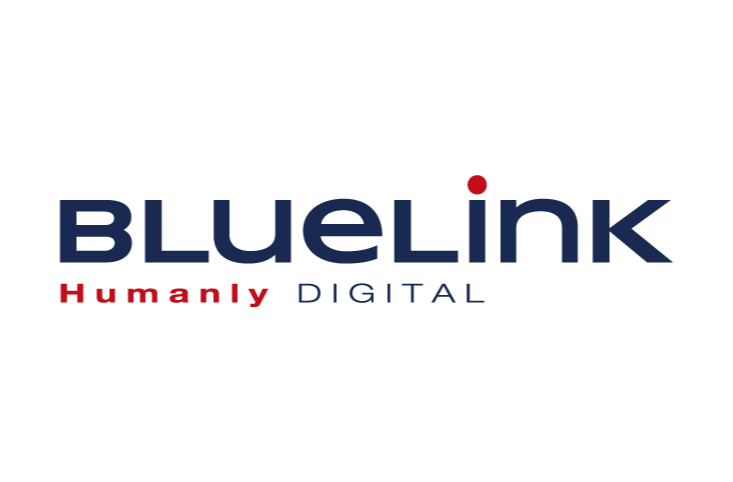 Bluelink Success Stories